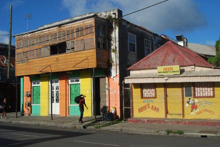 Barbados_01_(c)_DirkFellinghauer
